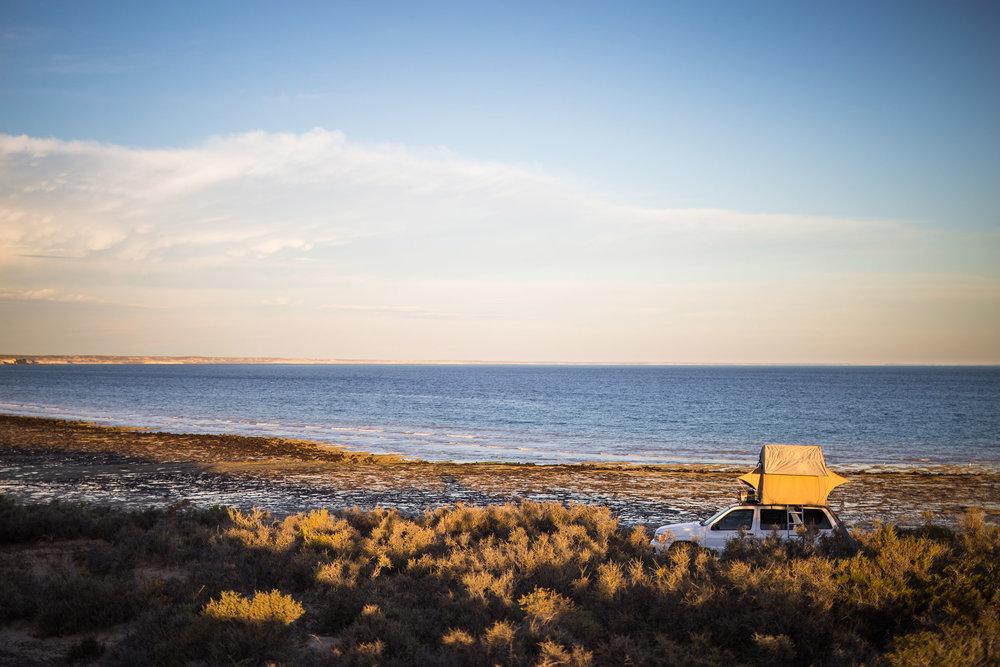wedding-travellers-argentina-peninsula-valdes-wild-camp