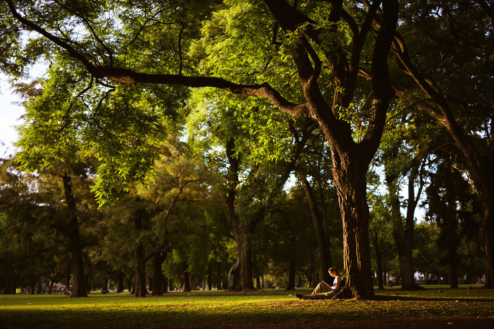 Wedding-travellers-Argentina-Buenos-Aires-Palermo-park-sunset