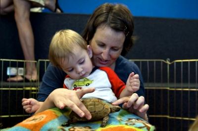 mom boy and turtle.jpg