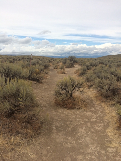 Historic Oregon Trail wagon ruts in Baker City, Oregon