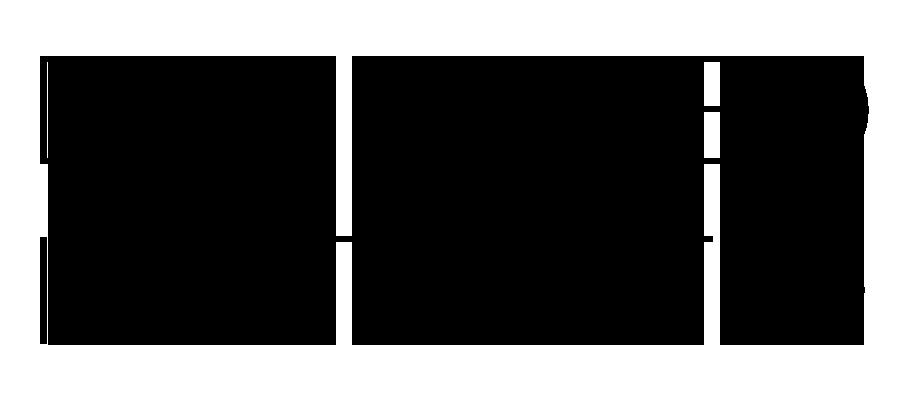 DI main logo.png