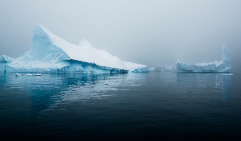 Julie-Jira_2015_PS_Antarctica-2.jpg