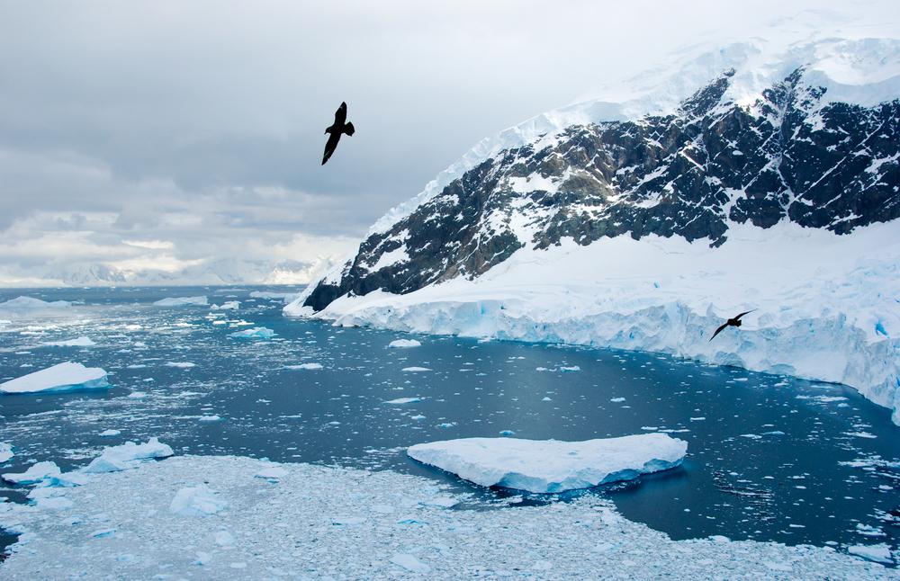 Julie-Jira_2015_PS_Antarctica-8.jpg