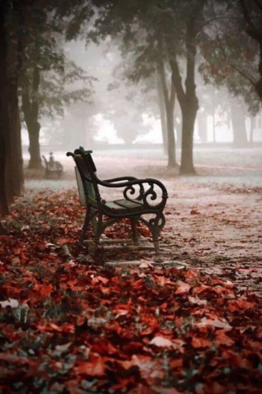 43f58d86472f6aec09c23db963ddd847--park-benches-garden-benches.jpg