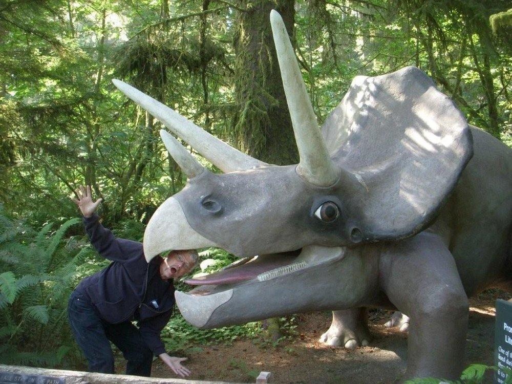 Triceratops Attack.jpg