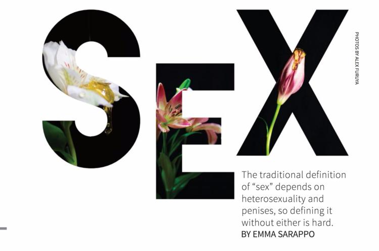 Examining sapphic sex