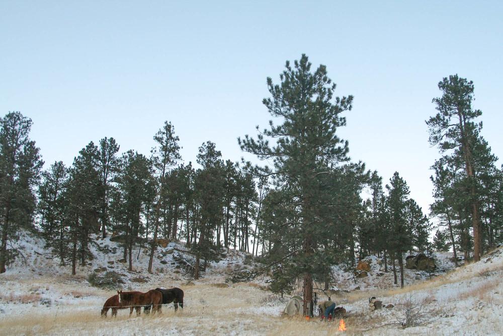 horsepack-1-45.jpg