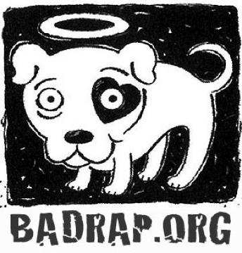 badrap.jpg