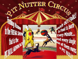 pit nutter circus.jpg
