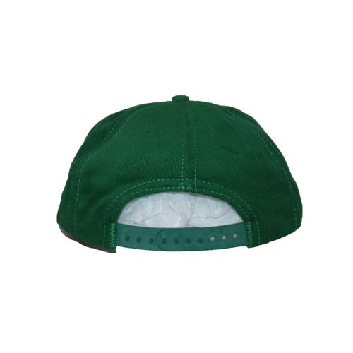 aea36e66 Vintage 90s budweiser Frog Snapback hat