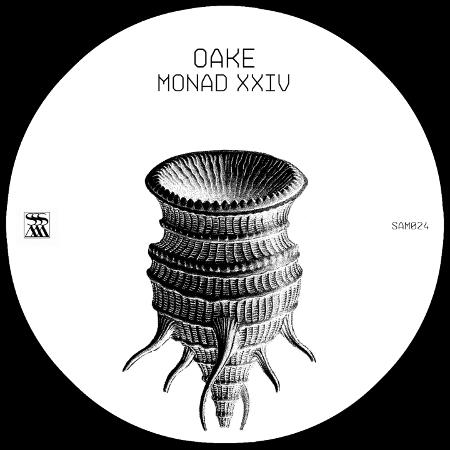 Monad XXIV (Stroboscopic Artefacts, 2016)