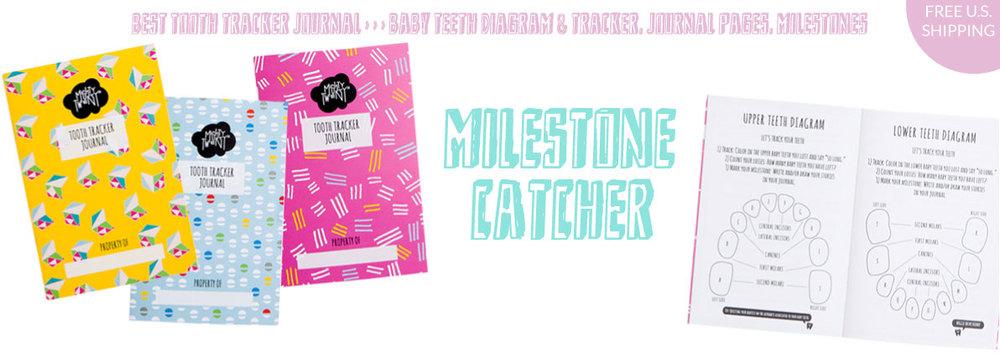 Mighty-Twenty-Tooth-Fairy-Milestone-Home-7.jpg