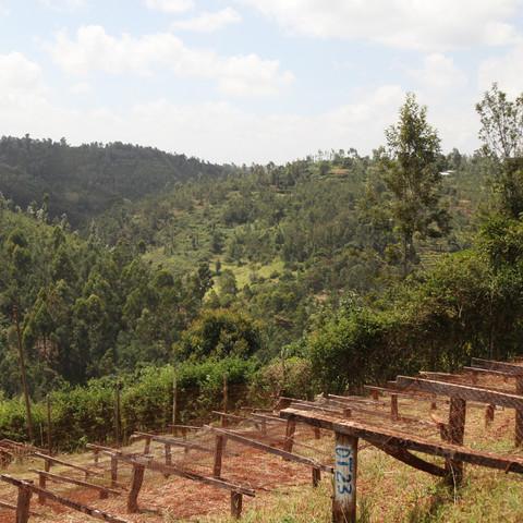 kenya4_large