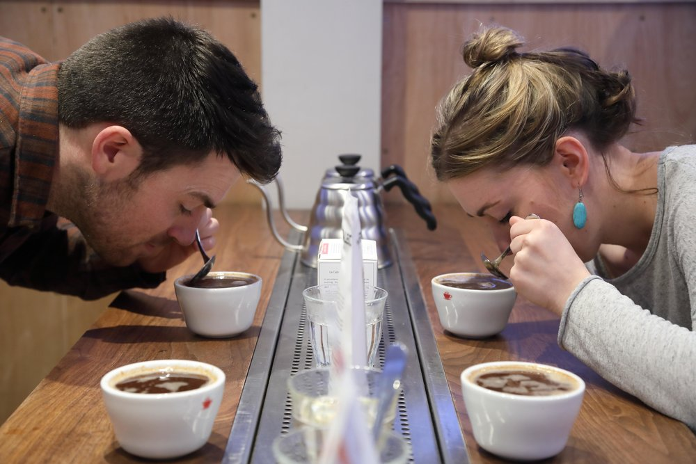Sensory Classes   Learn how to taste coffee.    Find out more