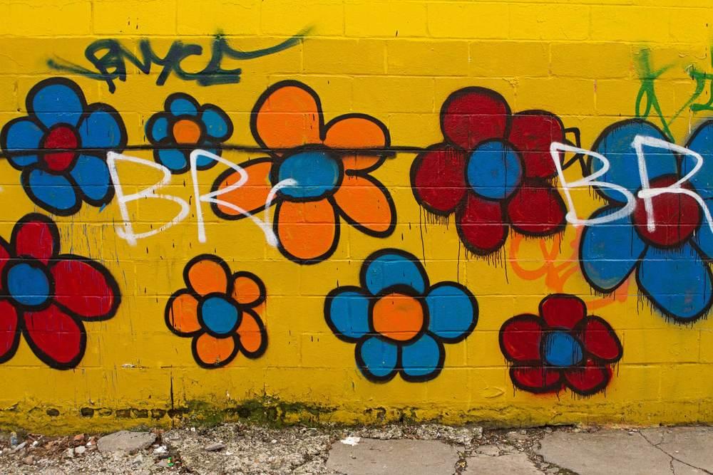 Bedford Stuyvesant - Brooklyn, NY.