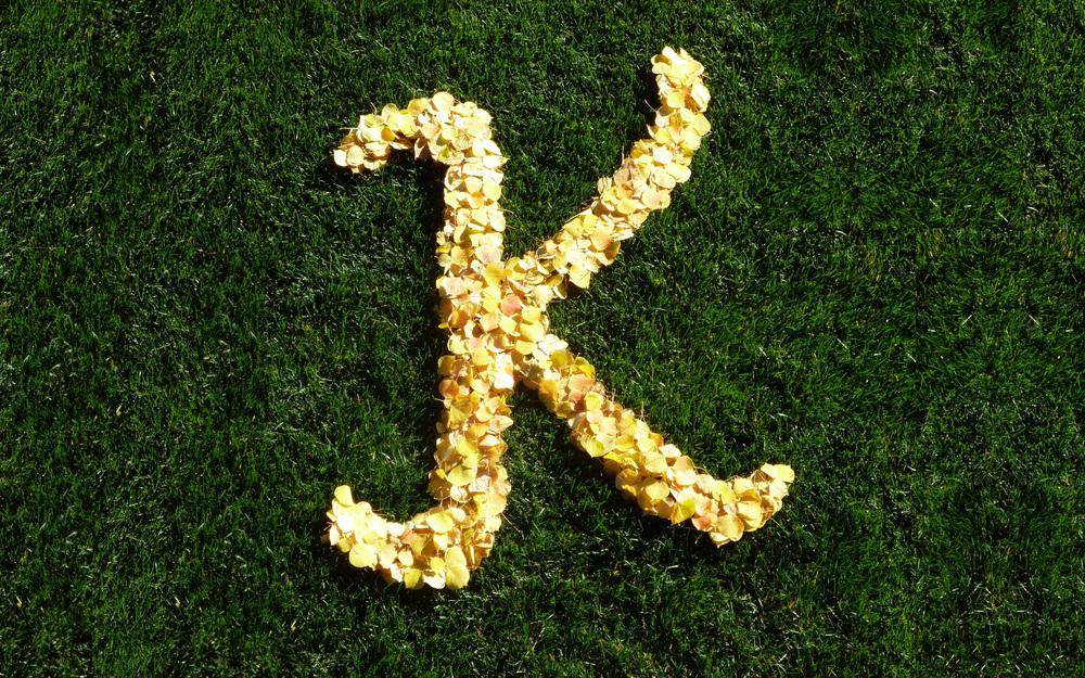 YellowKBackground3.jpg