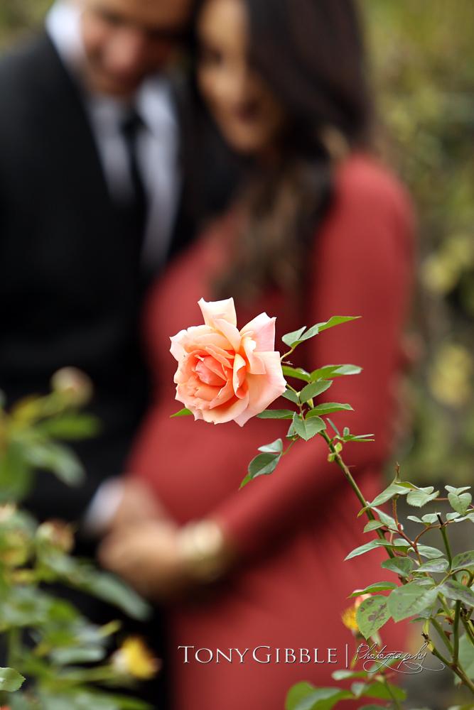 WEB - Hamad Maternity 14.jpg
