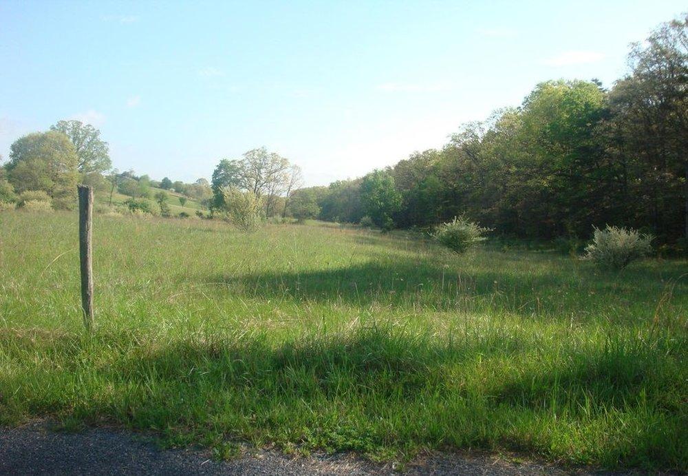 15806 Bear Hill Road