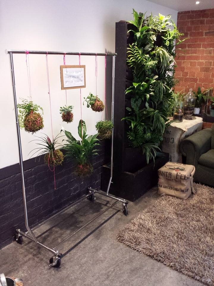 Indoor garden 2.jpg