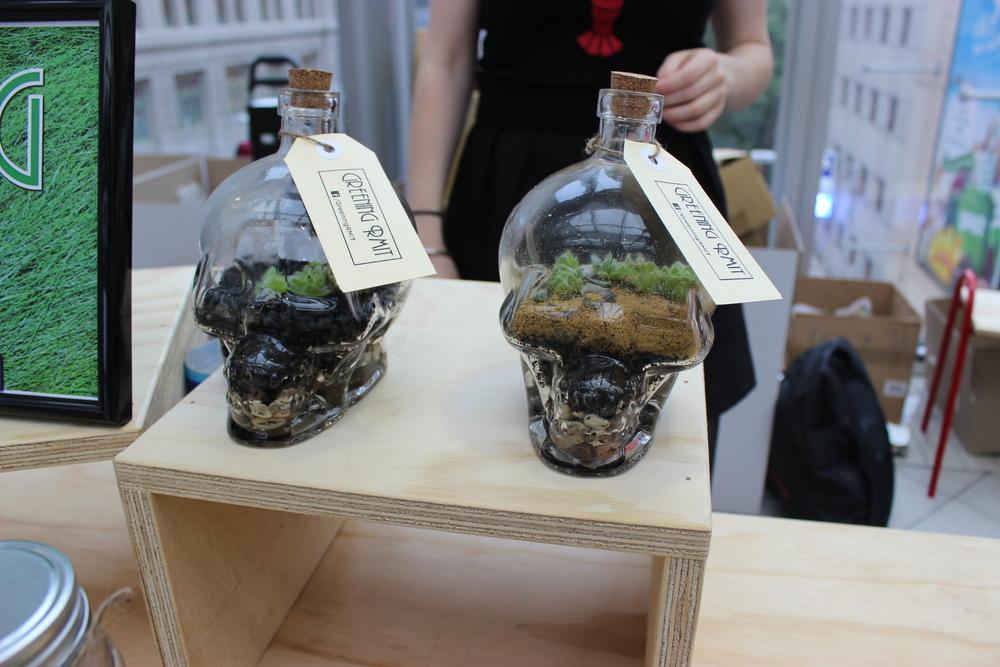 Skull terrariums.JPG