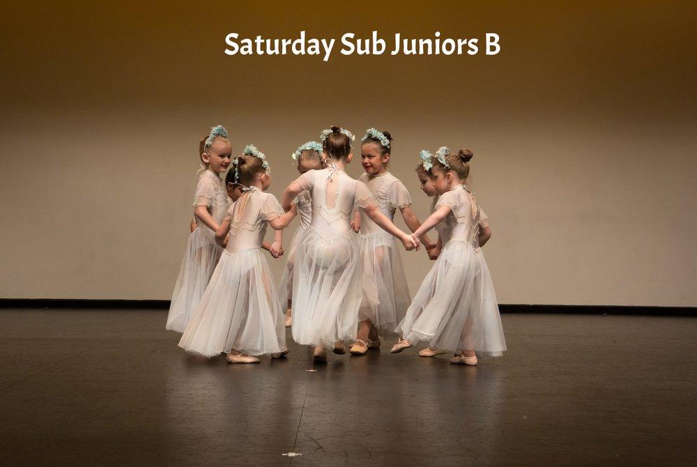 Saturday Sub Juniors Visions 2017 Website.jpg