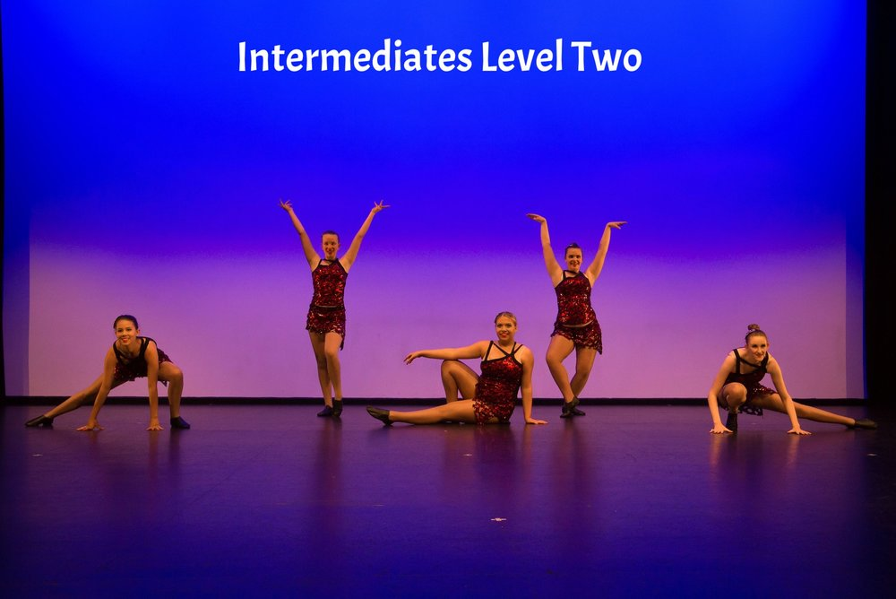 Intermediates Level Two Visions 2017 Website.jpg