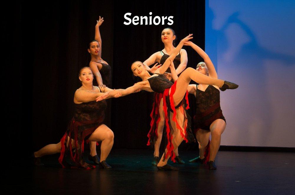 Seniors Visions 2017 Website.jpg