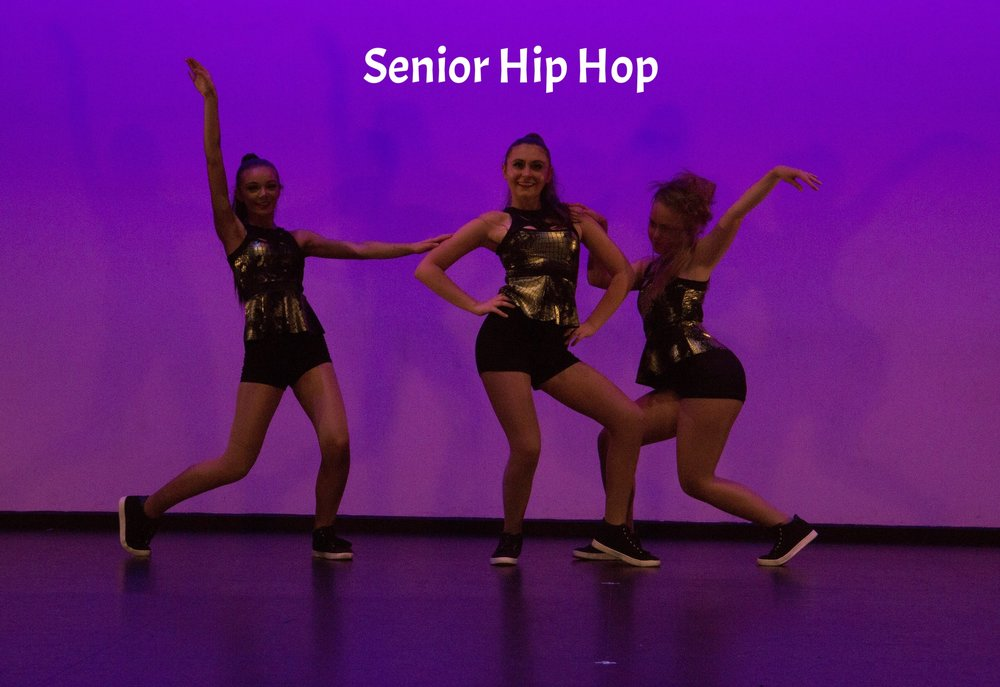 Senior Hip Hop VIsions 2017 Website.jpg
