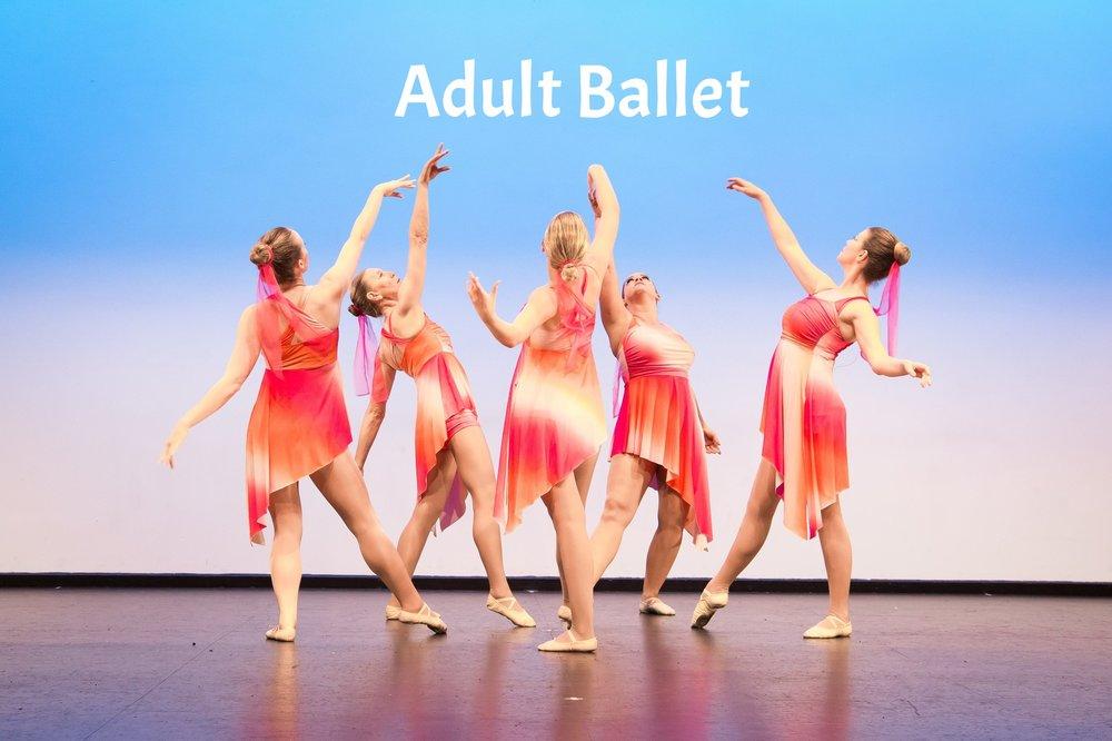 Adult Ballet Visions 2017 Website.jpg