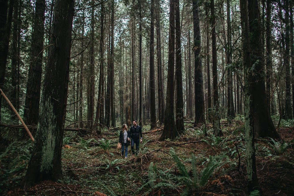 couple walking through forest pacific spirit park engagement