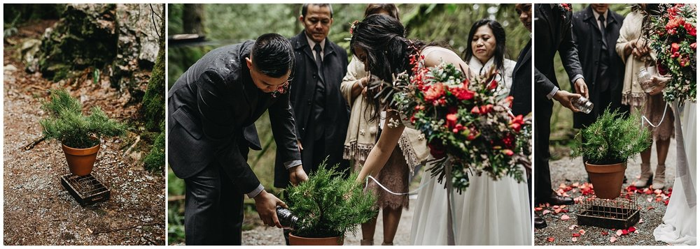 bride groom planting tree ceremony special moment golden ears park