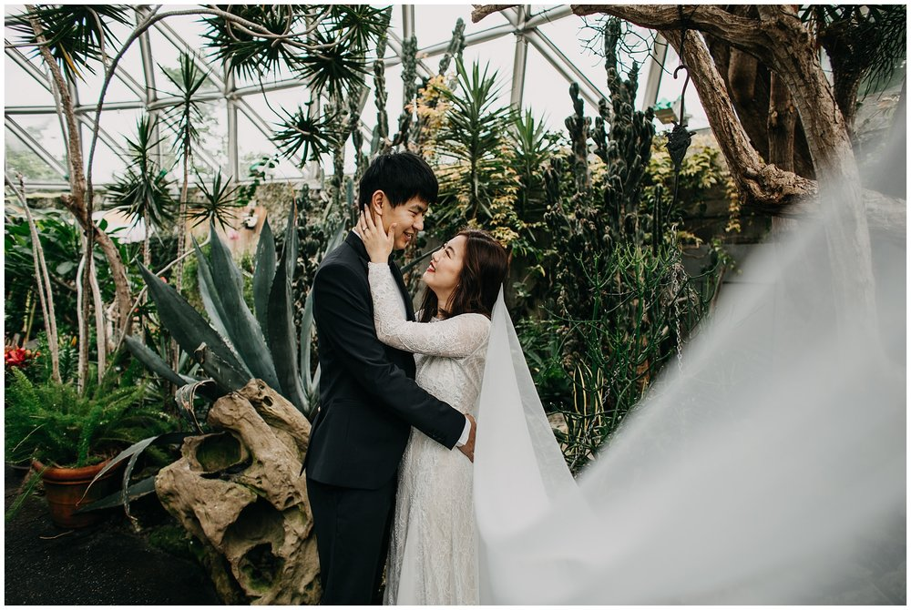 bride and groom veil portrait at bloedel conservatory vancouver