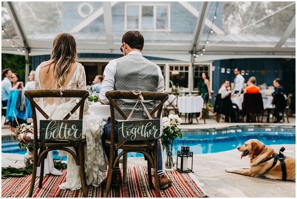bride and groom at reception with their dog at intimate mayne island backyard wedding