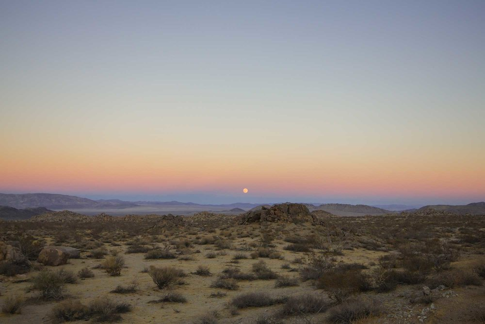 Jake_Durrett_Desert_Sunset.jpg
