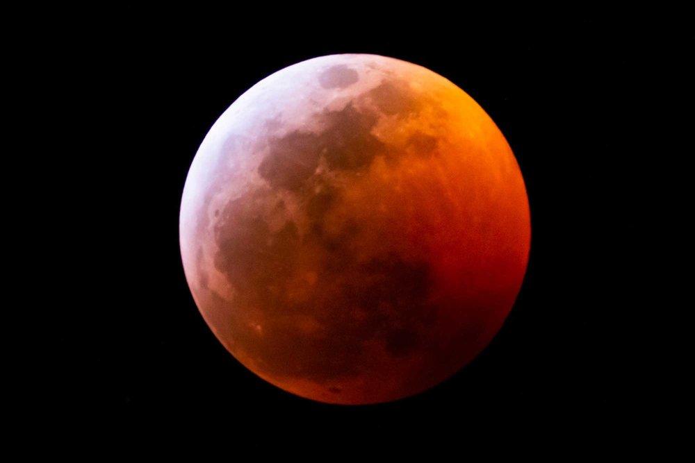 Jake_Durrett_Super_Blood_Wolf_Moon.jpg