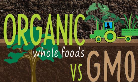 organic foods vs gmo