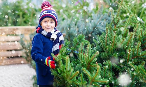 Artificial Christmas Trees: Are They Good for Your Health?