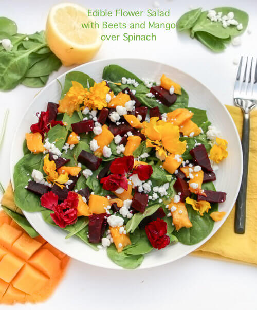 A plate of Edible Flower Salad with Beets Mango over Spinach Sala