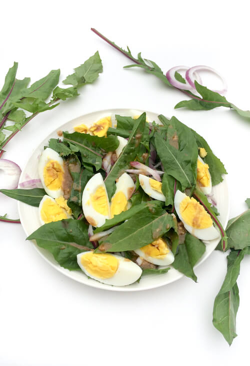 A plate of Dandelion Egg Salad with Dijon Dressing