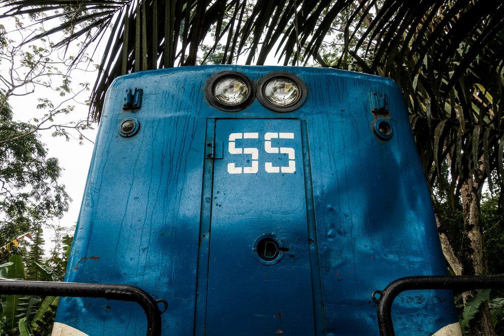 DSC01880.jpg