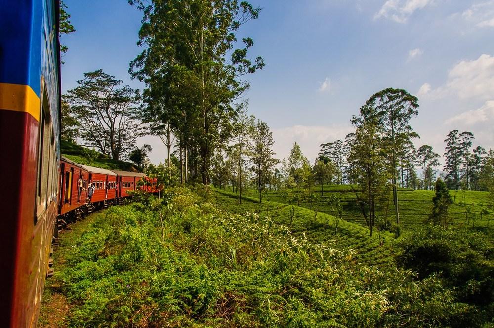 Sri Lanka Train.jpg