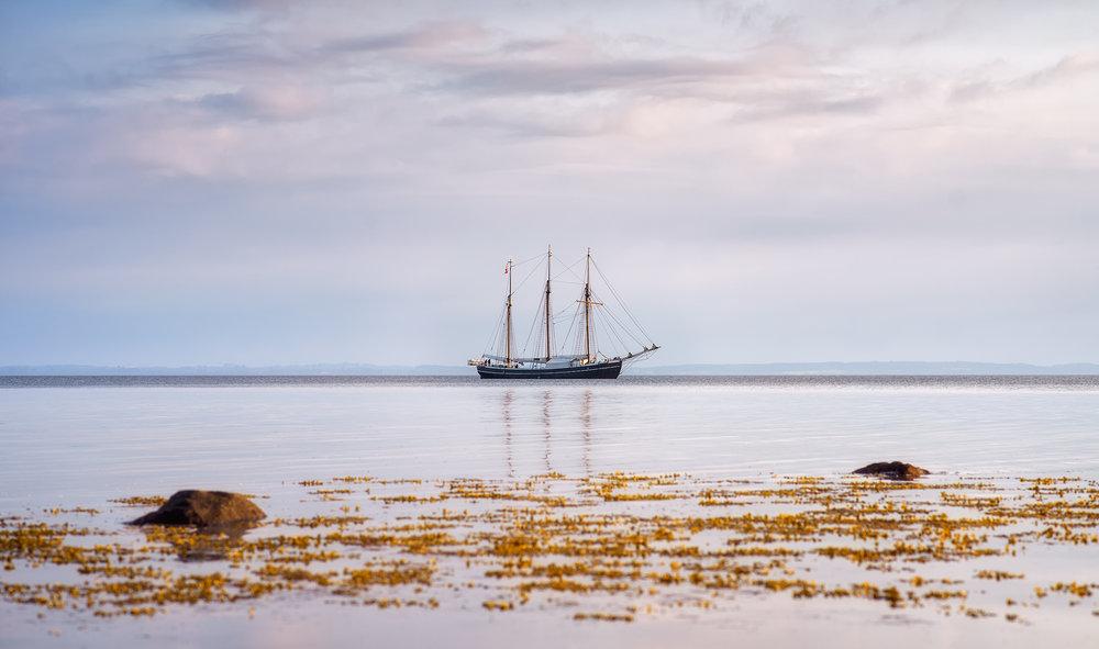 The Ship  2016