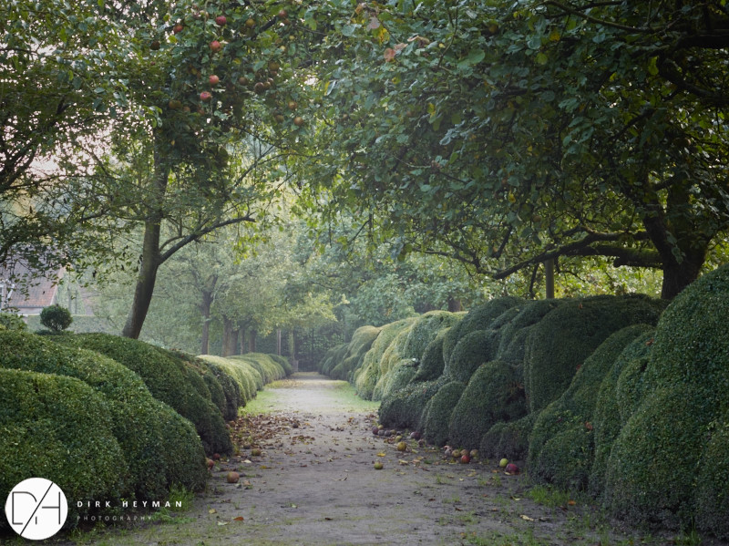Garden Jacques Wirtz 4* - Late Summer_by_Dirk Heyman (dh_photo@bluewin.ch)_1642.jpg