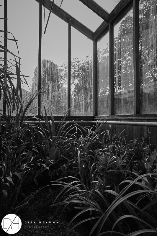 Orchid green-house in the garden of Jacques Wirtz © Dirk Heyman
