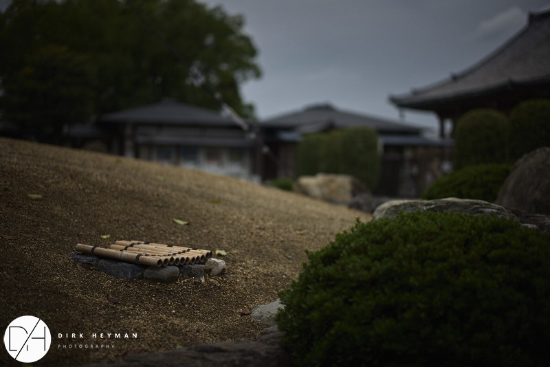 Kyoto 2014 All_by_Dirk Heyman_210.jpg