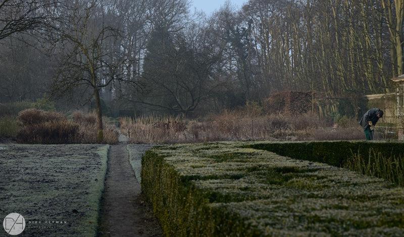 Wirtz Garden Winter by Dirk Heyman 6479.jpg