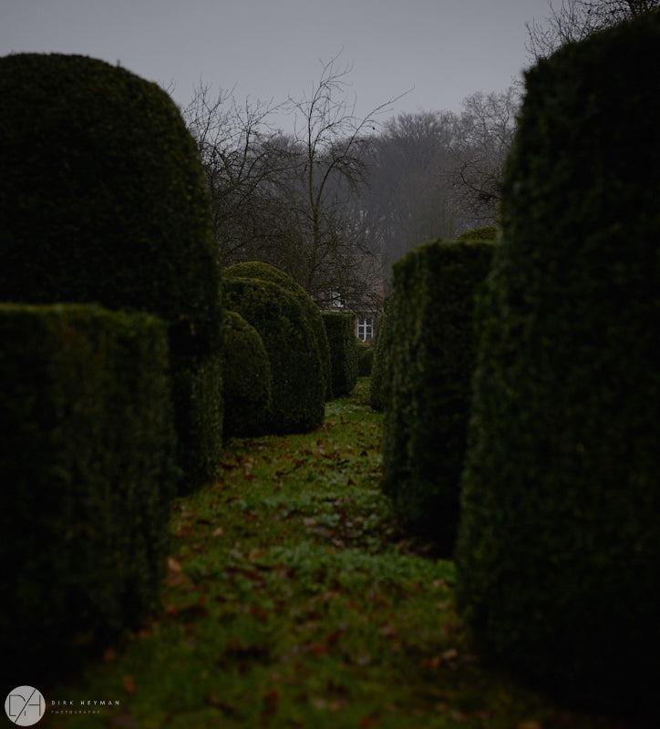Wirtz Garden Winter by Dirk Heyman 6430.jpg