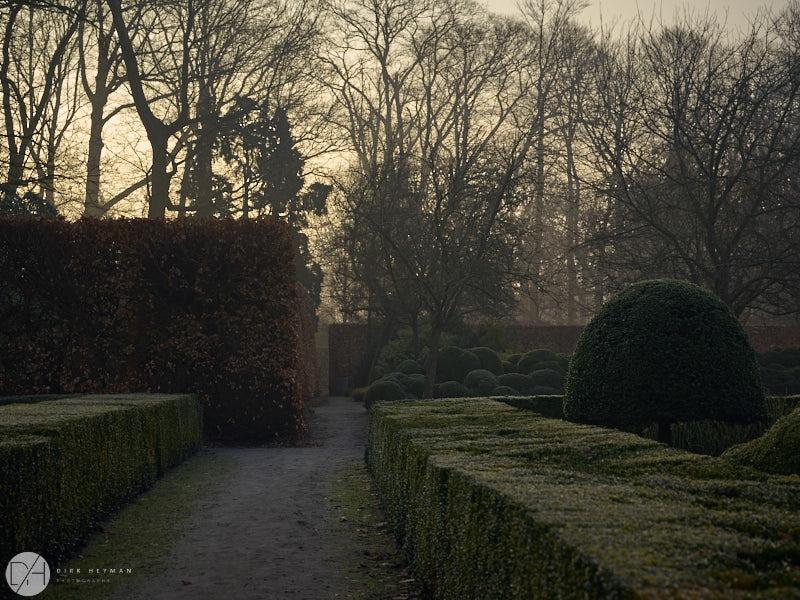 Wirtz Garden Winter by Dirk Heyman 6481.jpg