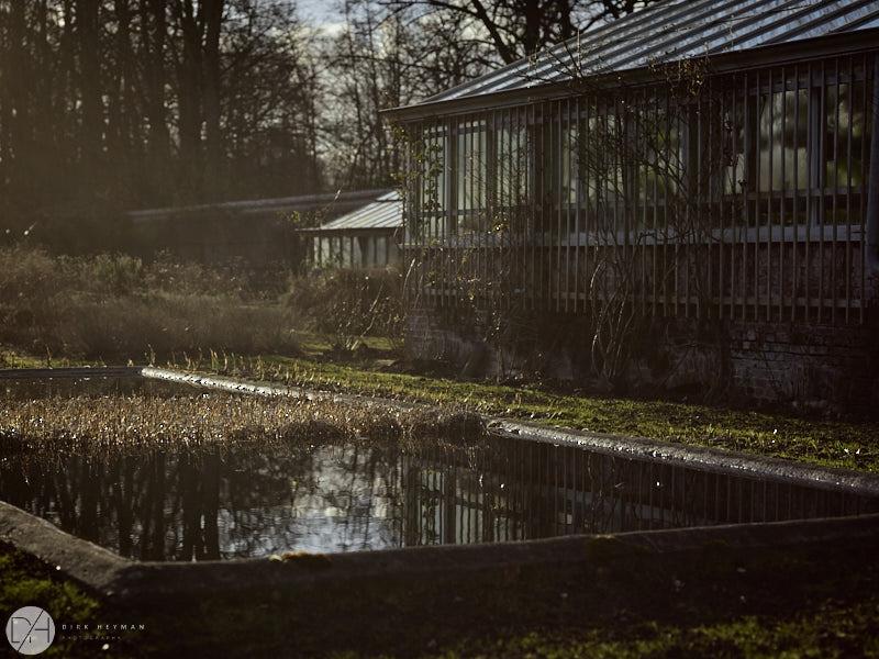 Wirtz Garden Winter by Dirk Heyman 6464.jpg