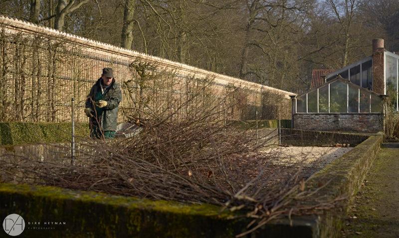 Wirtz Garden Winter by Dirk Heyman 6501.jpg